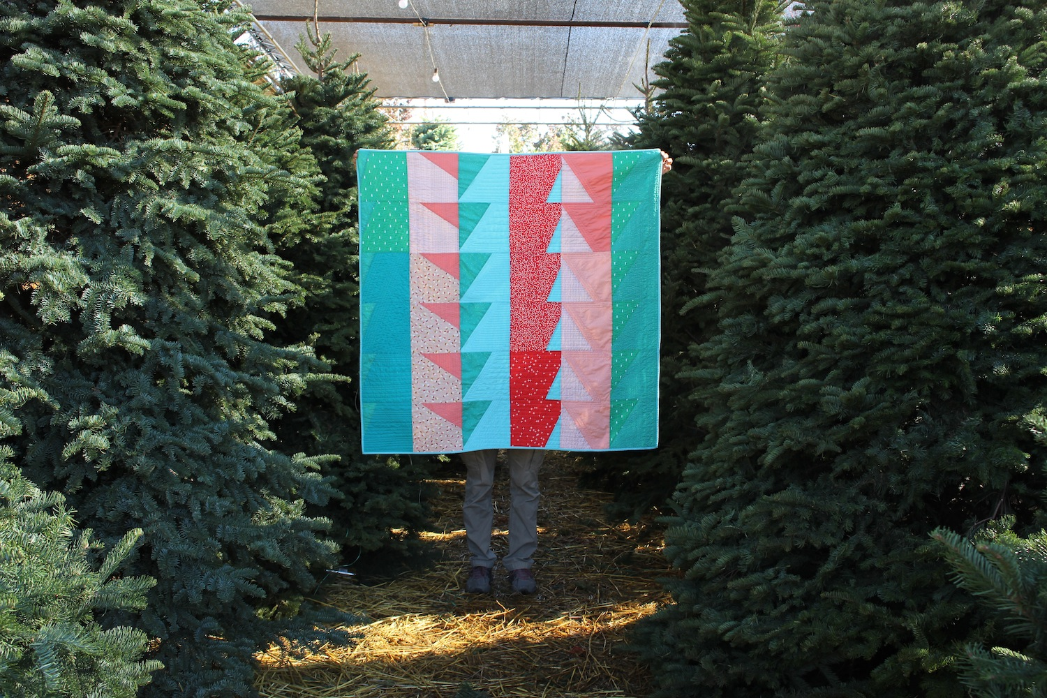 Candy Cane Lane - 50x51 | 2018, Quilt 025Bayside by Suzy Quilts