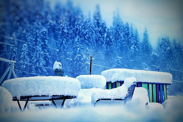 Endlich schnee!!!Finally snow!!!Finalmente neve!!! 📷 @umberto_mantovano  #schnee #snow #neve #laax #laaxisniceyo #laaxbaby #swisshostels #fullwhite #winteriscoming❄️ @laax @swisshostels