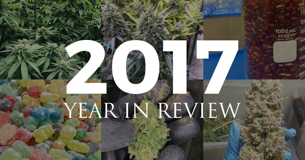 2017_review.png