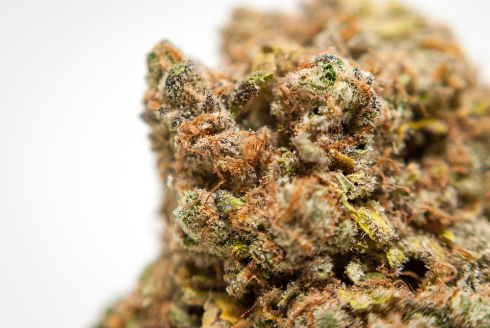 Where to Buy weed in Smyrna Medical marijuana dispensary Smyrna Buy Exotic carts online Smyrna buy Cannabis online Smyrna Buy THC oil Smyrna