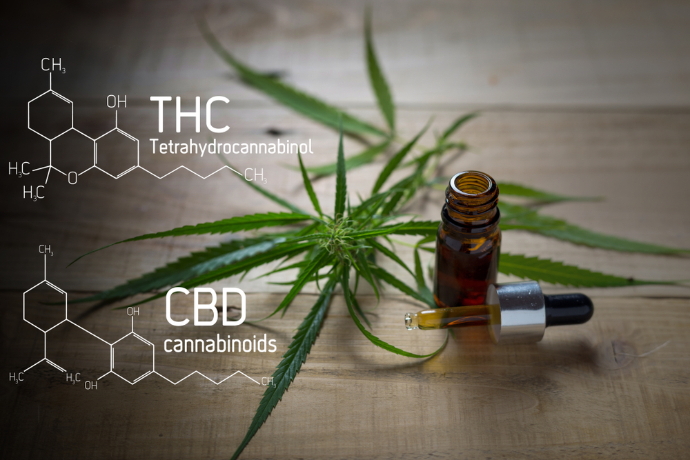 What Is the Difference Between THC and CBD? - Giving Tree Dispensary