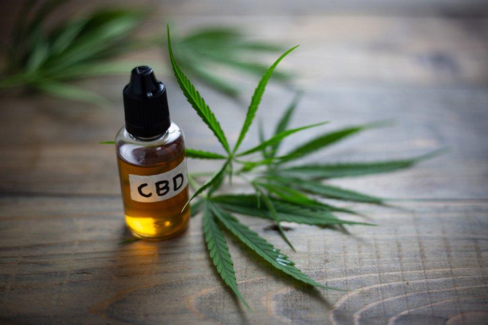 hemp.vs.000.cannabis (1).jpg