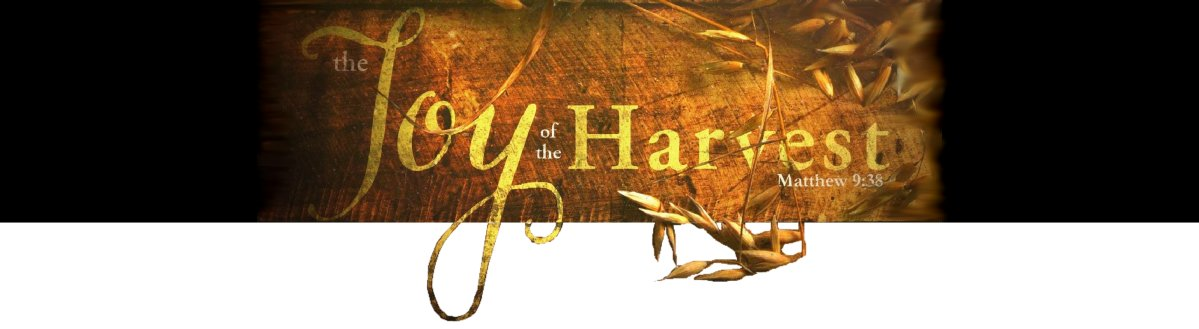 Joy of the Harvest - bar title.jpg