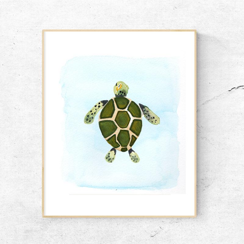 KJV_Sea_Turtle.jpg