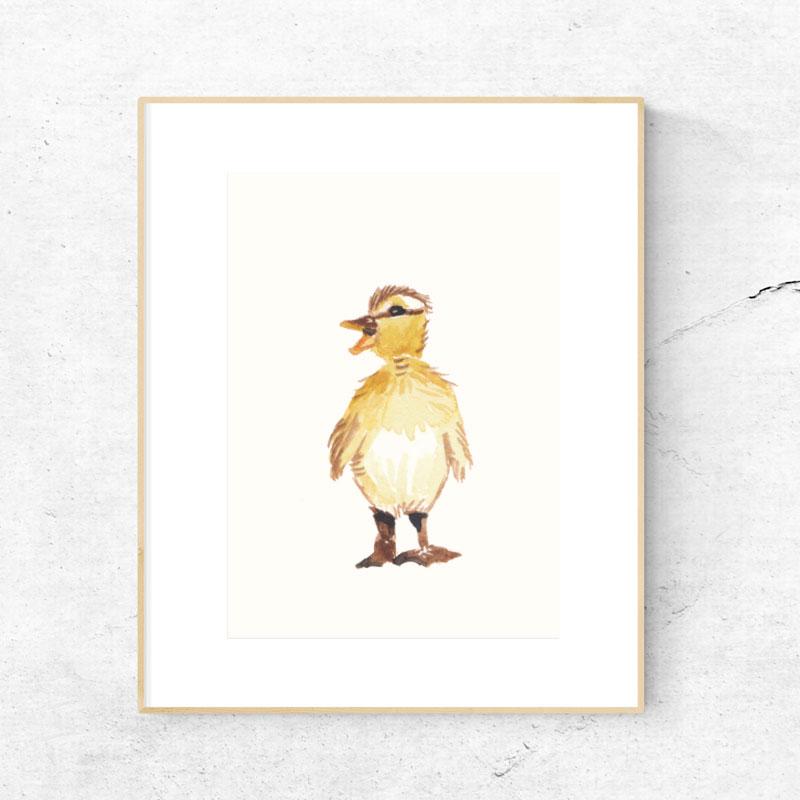 KJV_Baby_Duck.jpg