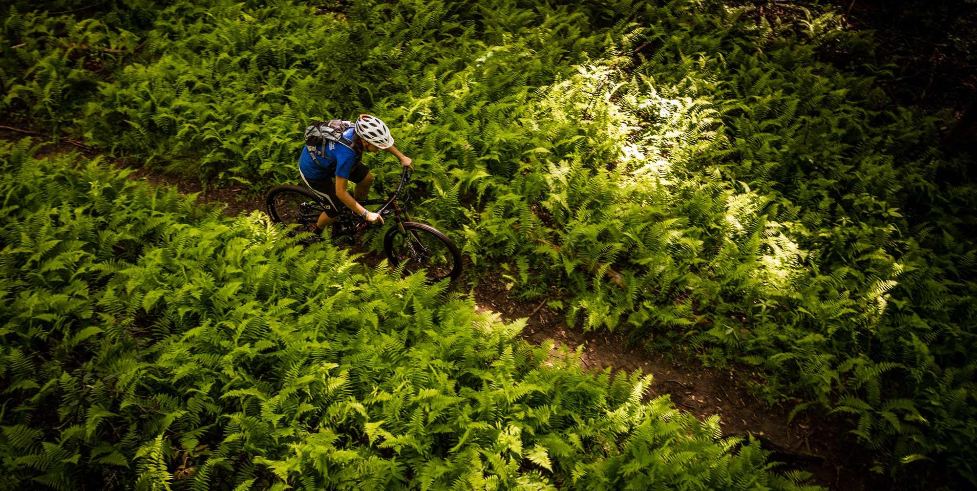 biking-at-the-bike-farm.jpg