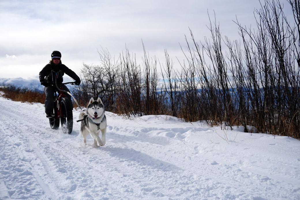 Cashion-Smith-and-Maya-Surlsmith-snow-biking-1-1040x693.jpg