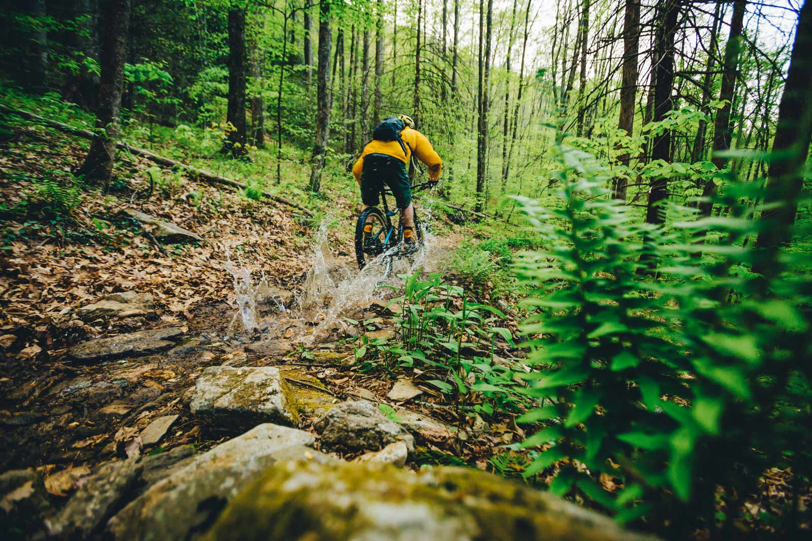 bike-riding-wet.jpg