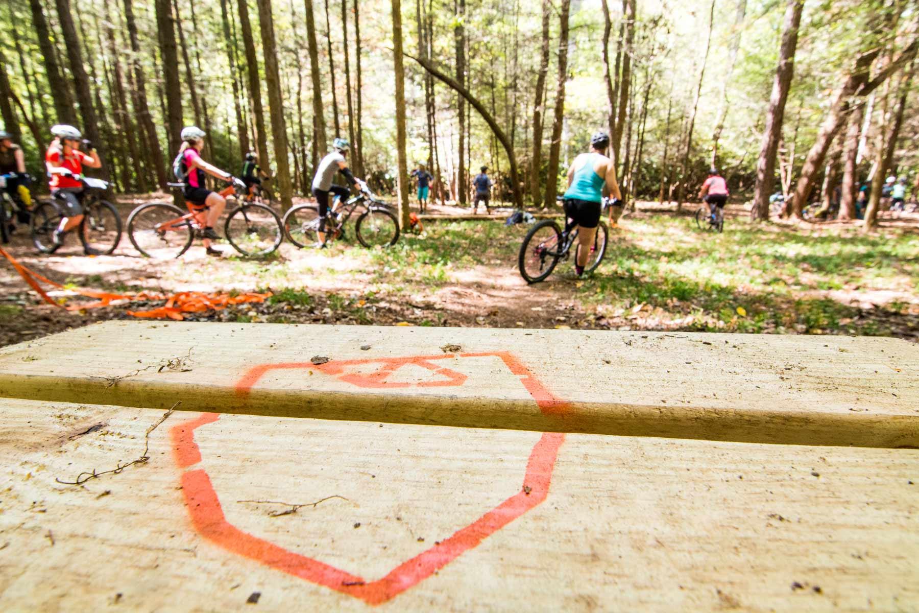 bike-lessons.jpg