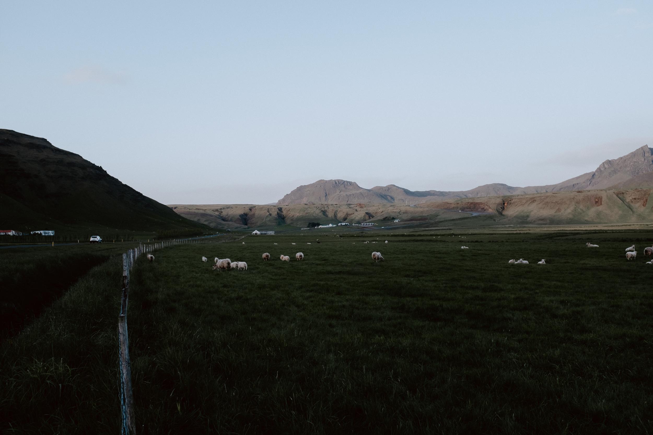 Iceland-534.jpg
