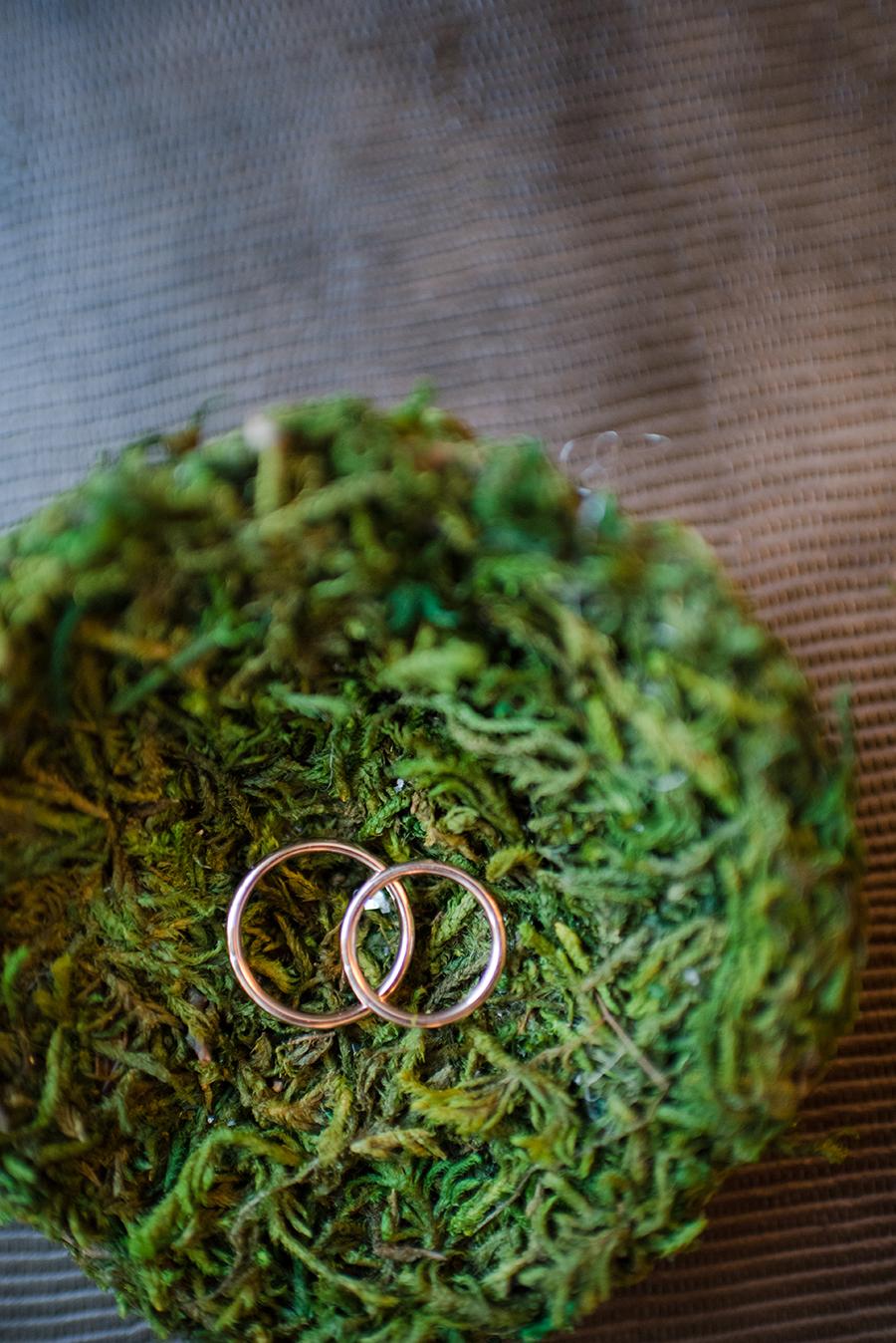 asheville-wedding-photography-002.jpg