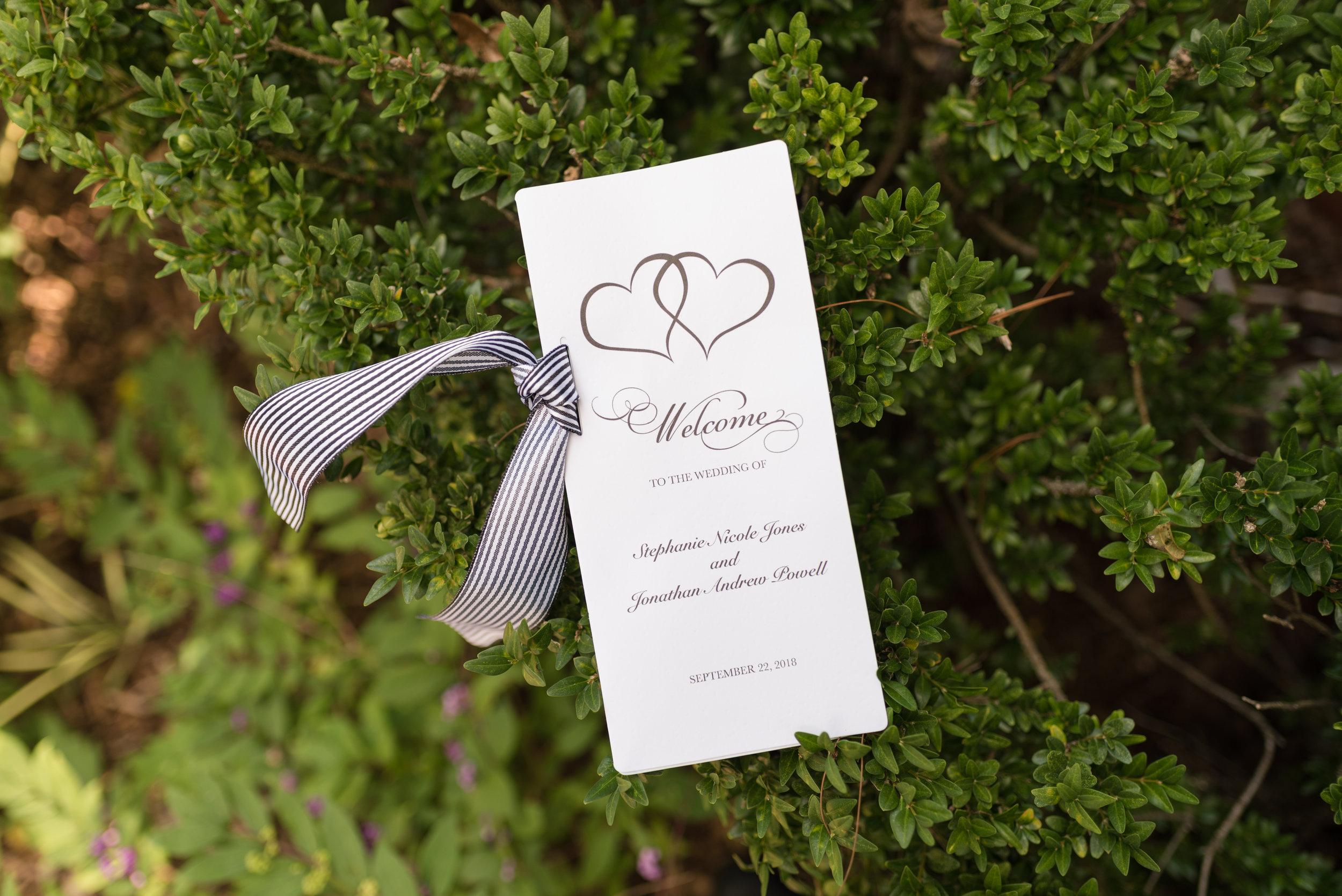 Wedding Photography Asheville -04.jpg