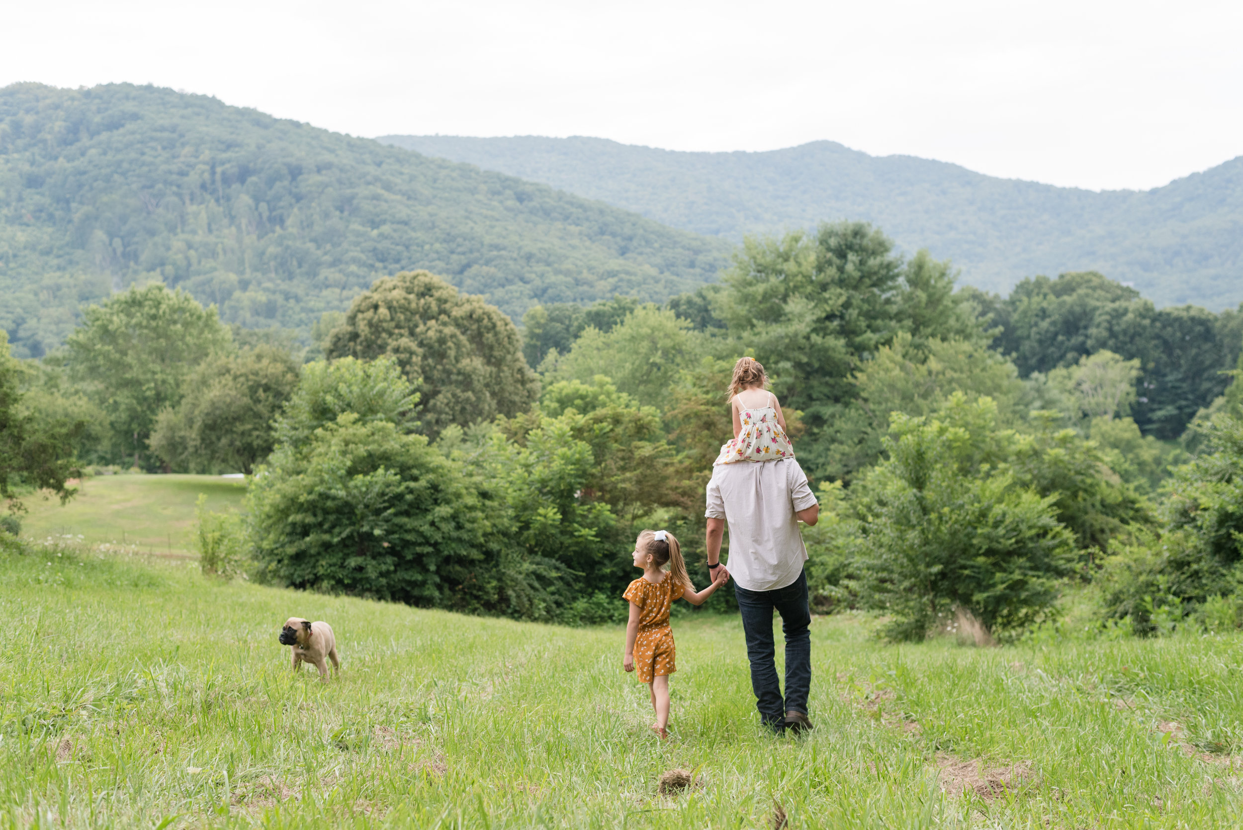 asheville-family-photographer- 011.jpg