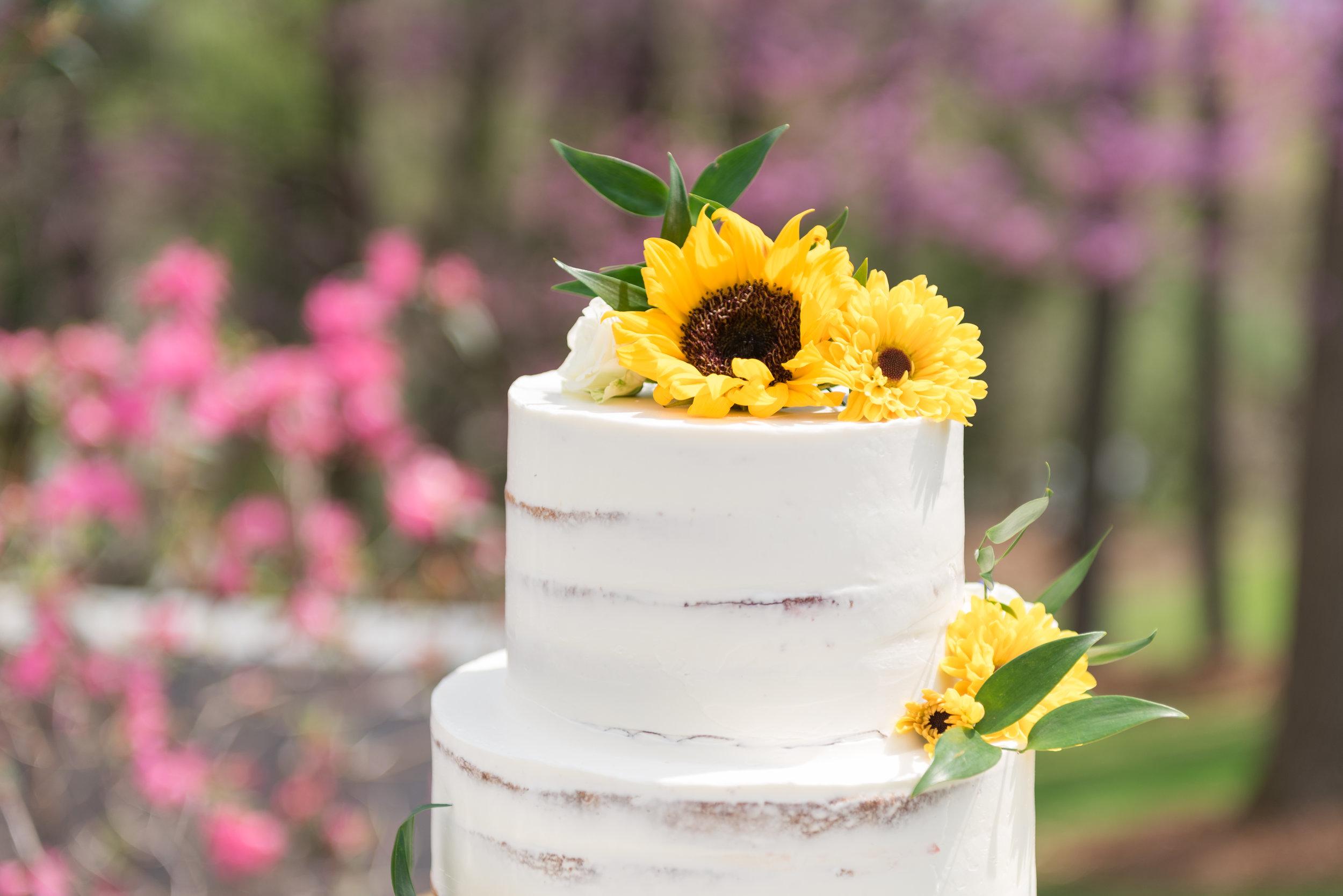 Biltmore-village-inn-weddings-002.jpg
