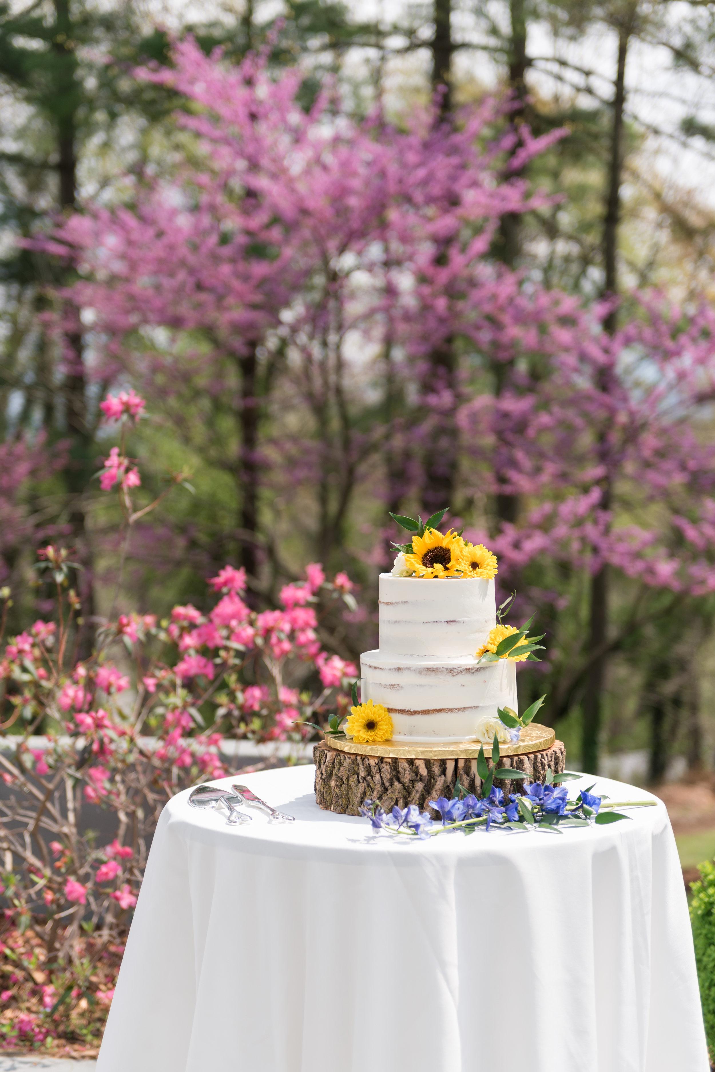 Biltmore-village-inn-weddings-001.jpg