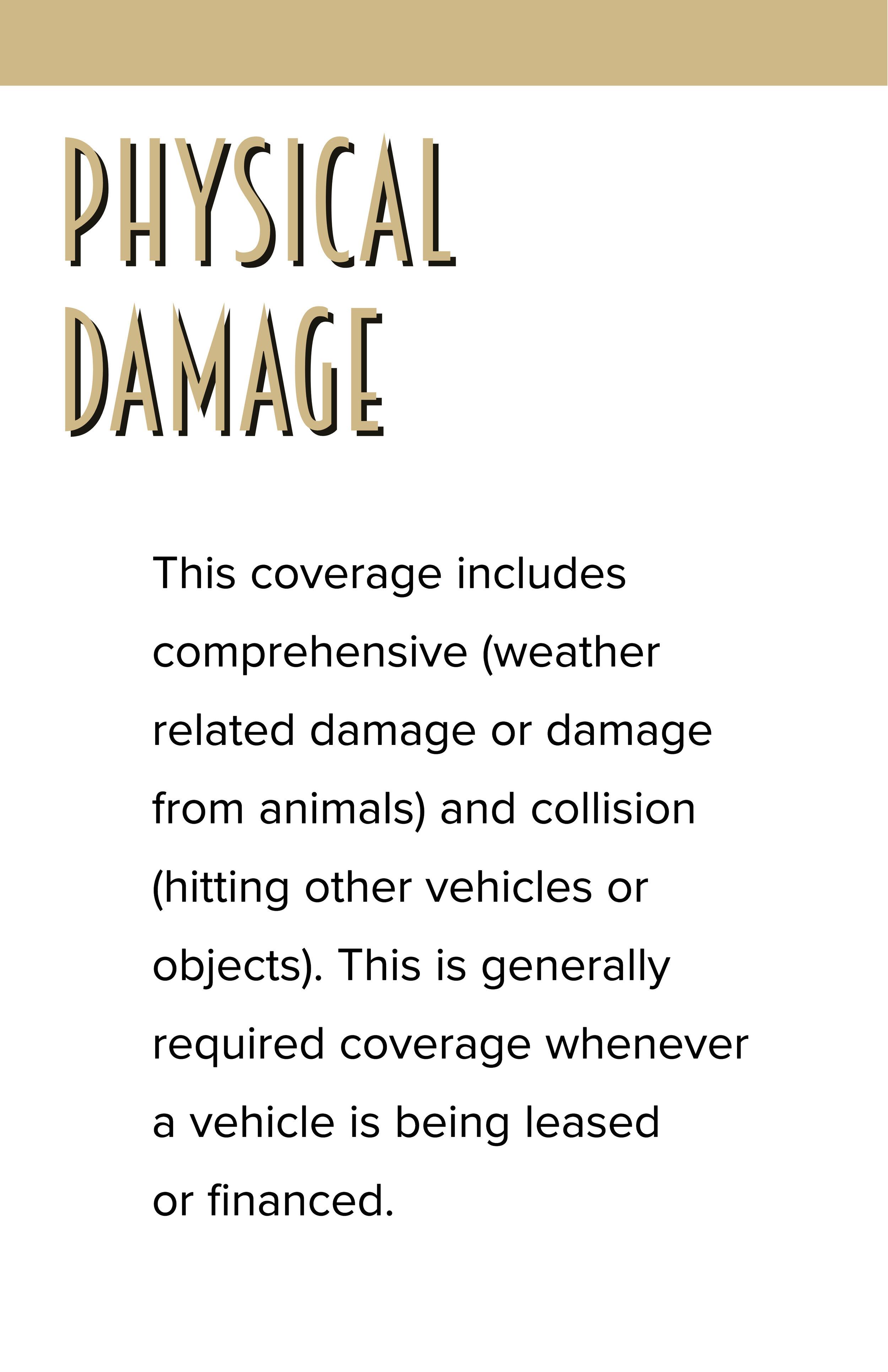Physical Damage(1).jpg