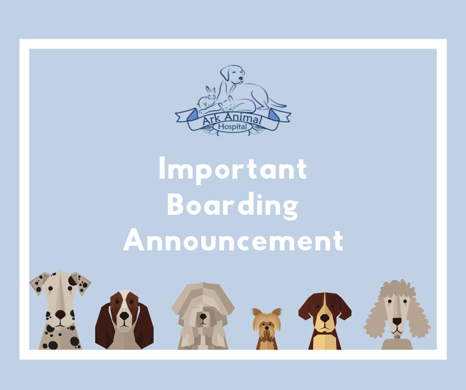 Boarding Announcement.png