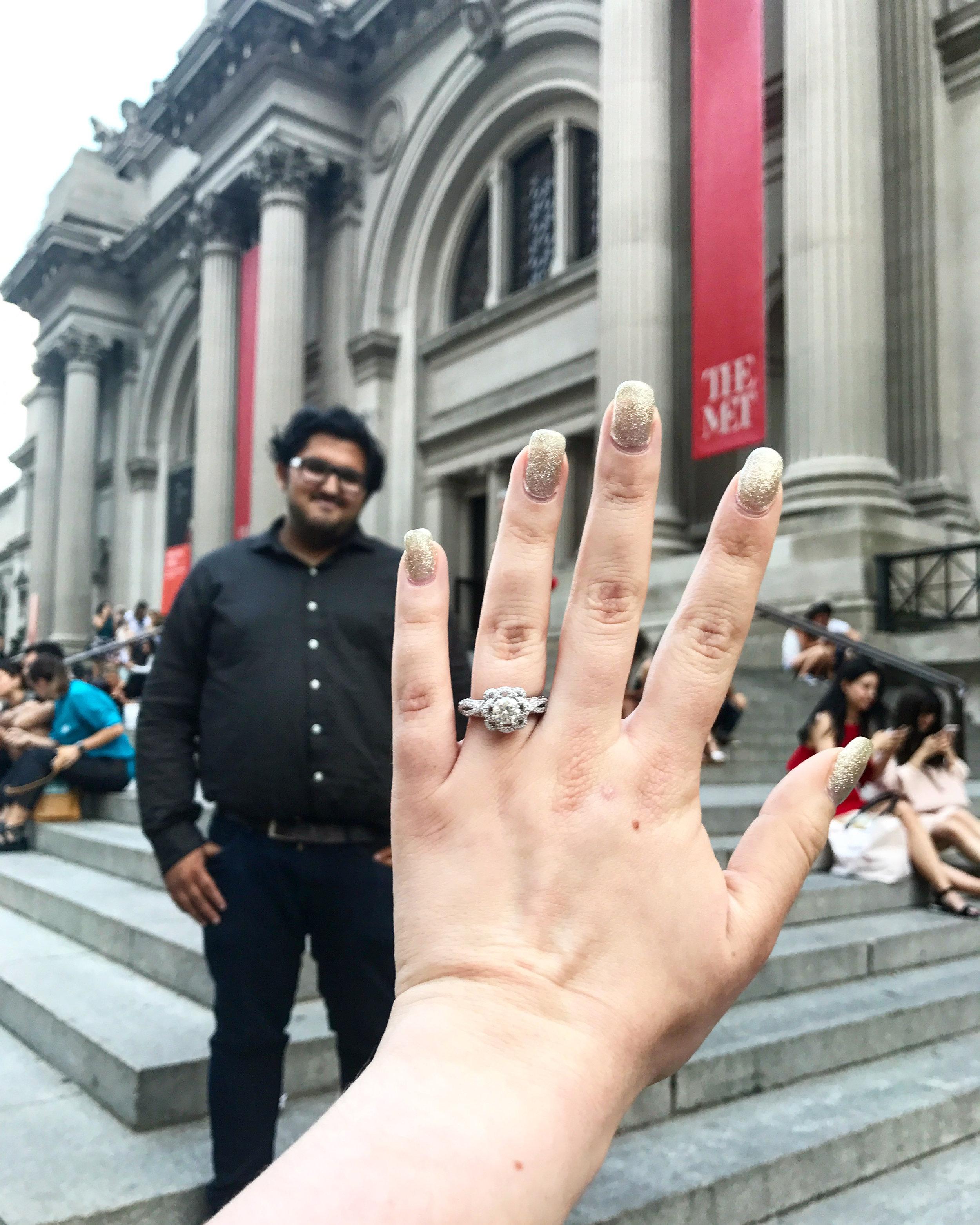 New York City The Met Proposal