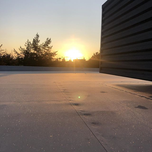 A beautiful sunrise as seen on a frosty roof! Happy Wednesday!