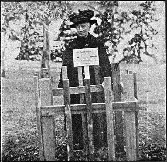 Unknown mourner at tree.  [Tasmanian Mail 8th August 1918 p18]