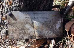 Pte Jim Shea's plaque.
