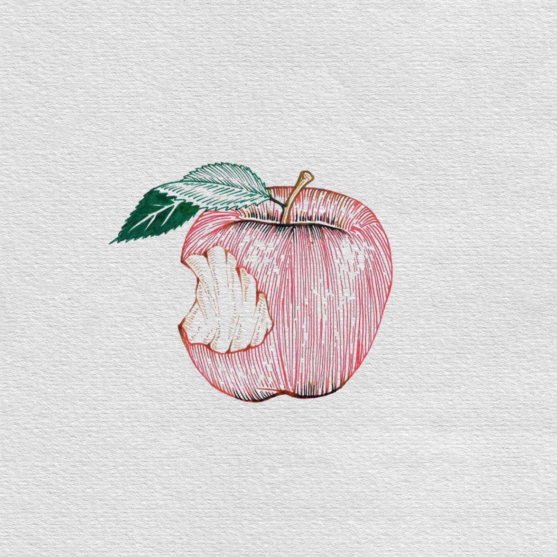 bask-studio-cider-apple-illustrations-image2.jpg