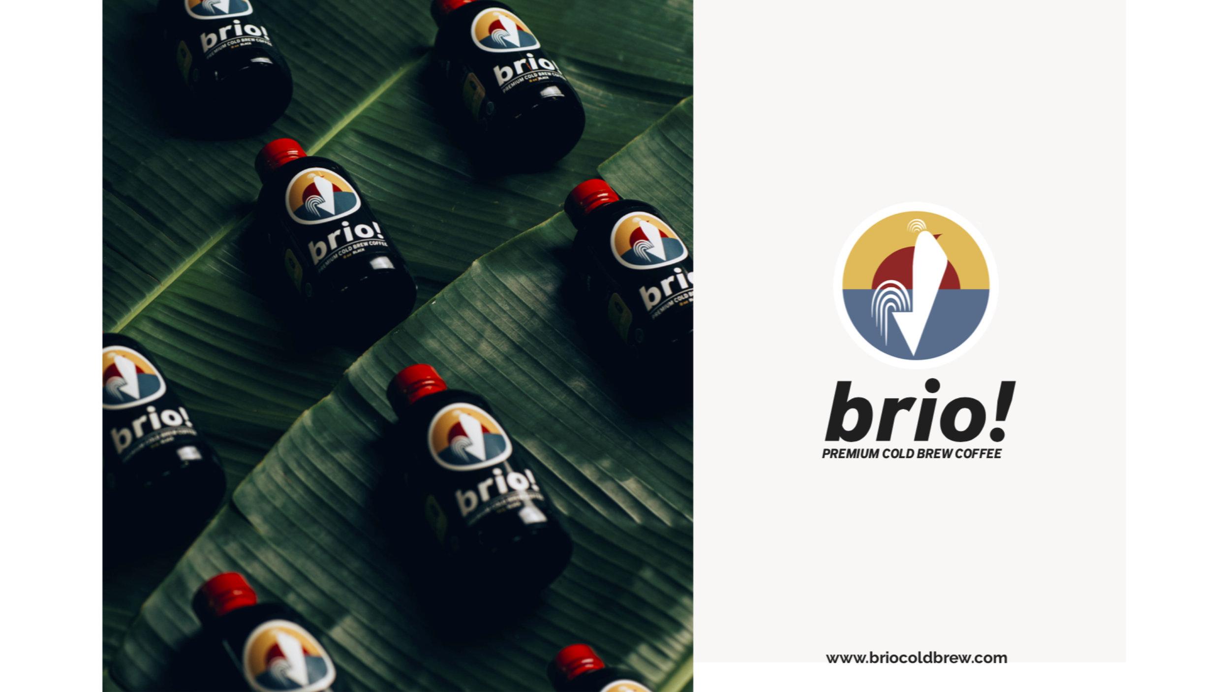brio!_Pitch Deck_12062018-1.jpg