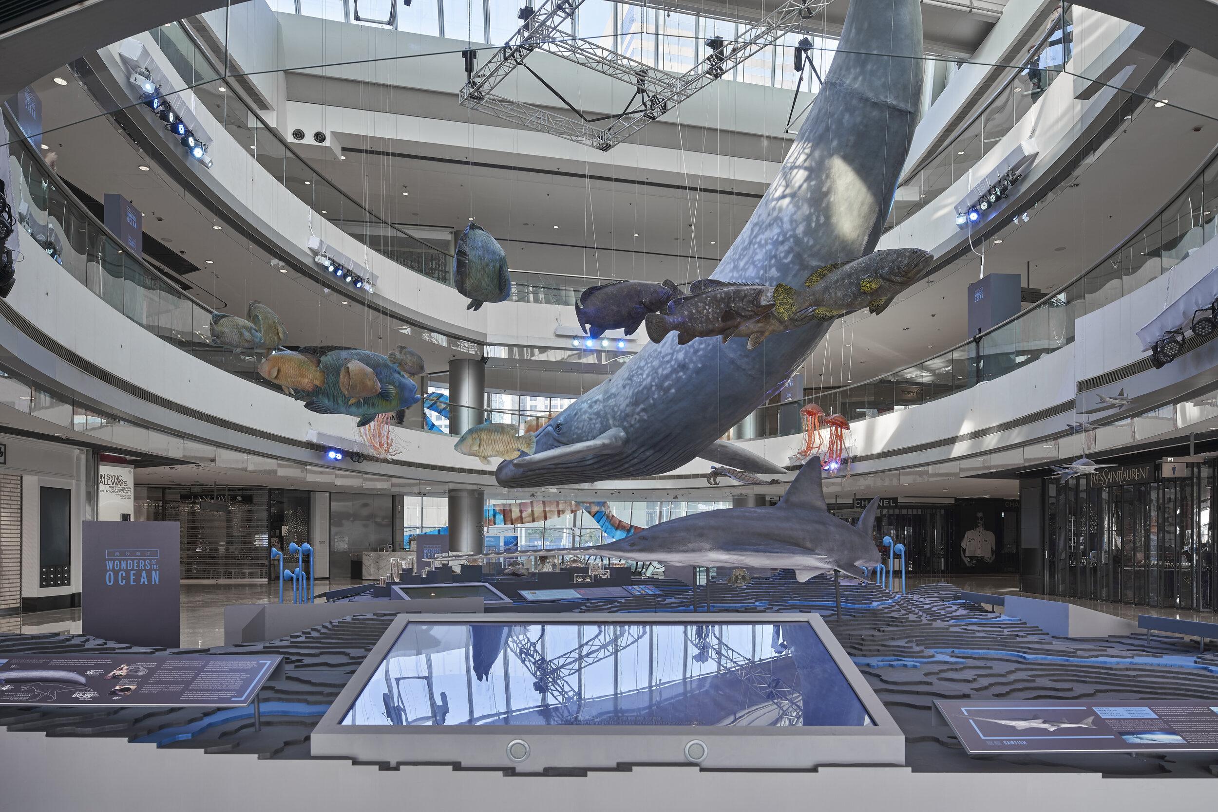 Oceans IFC 06.jpg