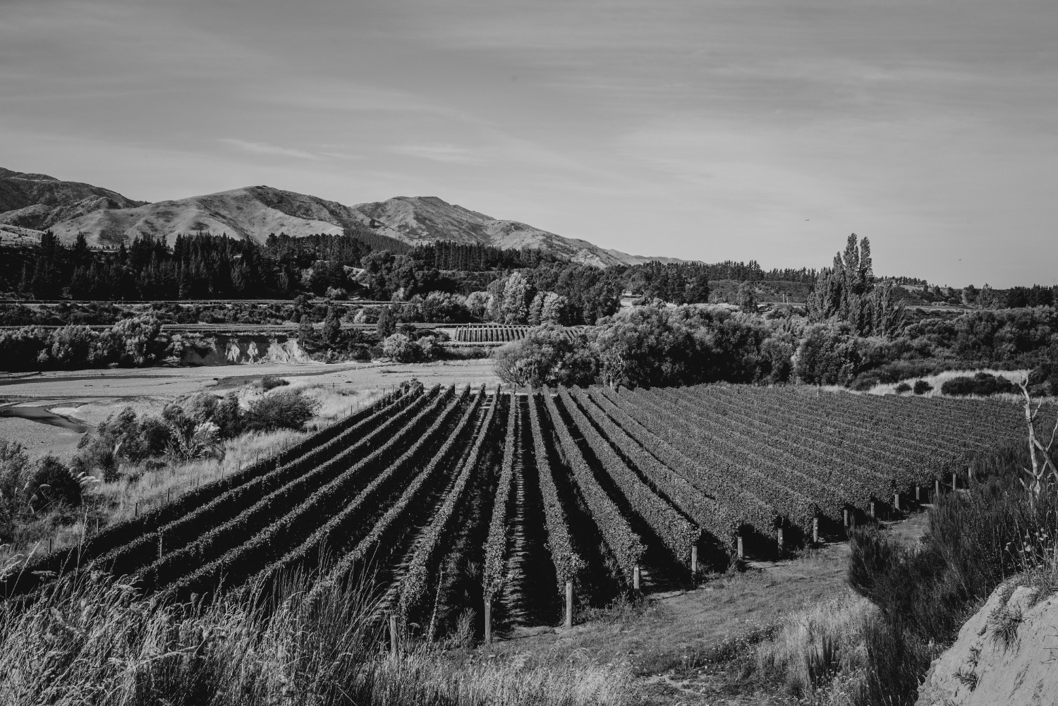 Whenua Awa vineyard - Whenua Awa, 'river lands', is our vineyard to the east of Te Tauihu.Rising majestically behind Whenua Awa vineyard, Tapuae-o-Uenuku has watched over our land and people since we first arrived here, and will continue to do so for centuries to come.Read more >