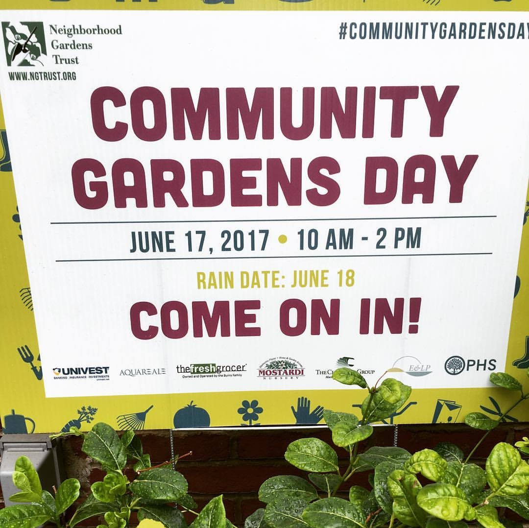 Participating in Community Gardens Day