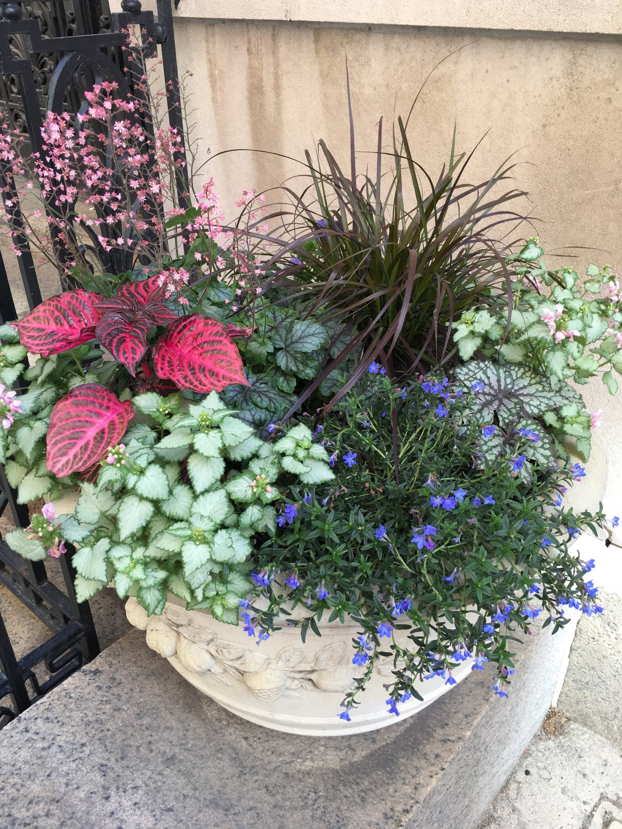 Container Gardening City Planter