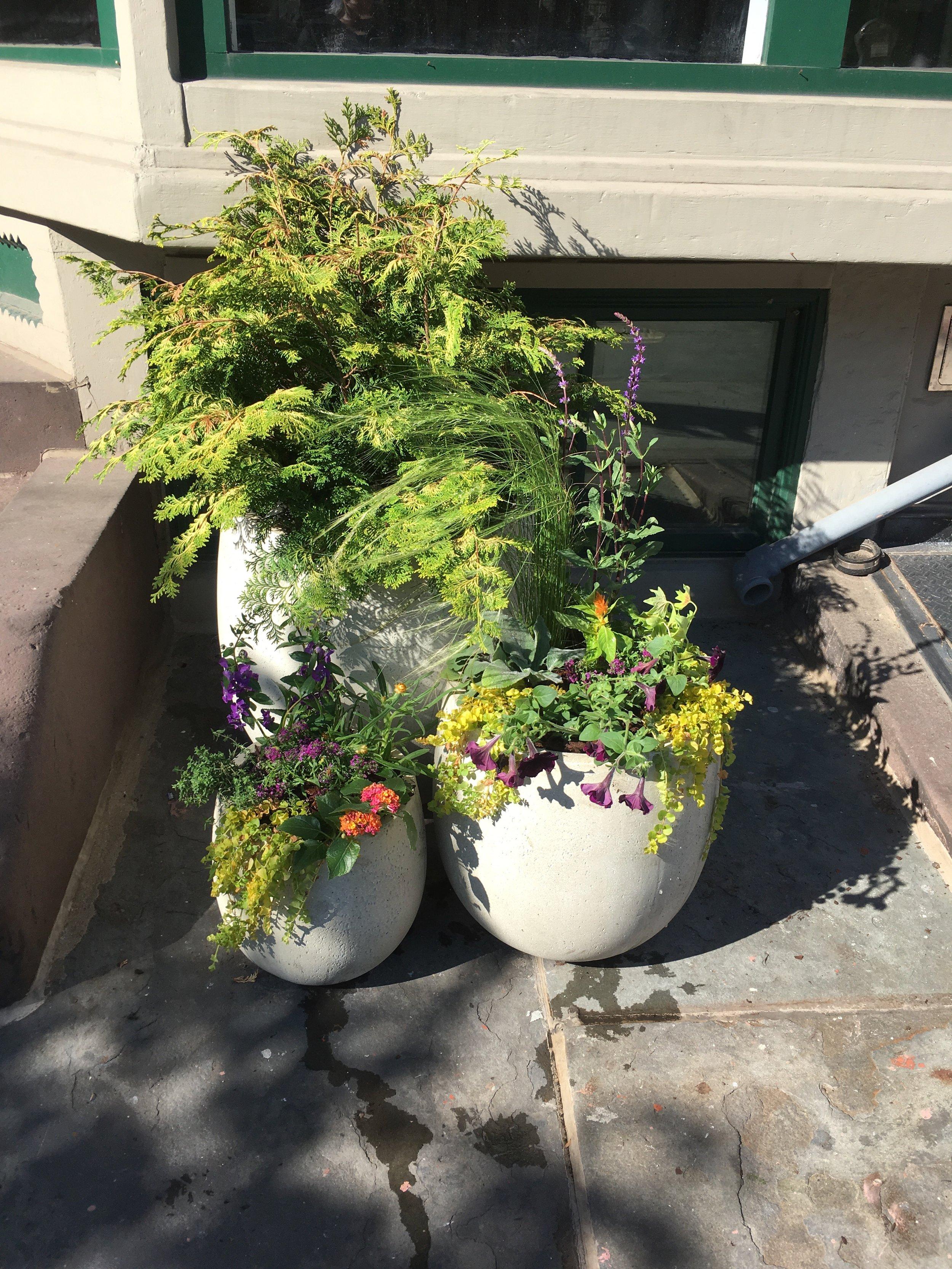 After Spring Planting