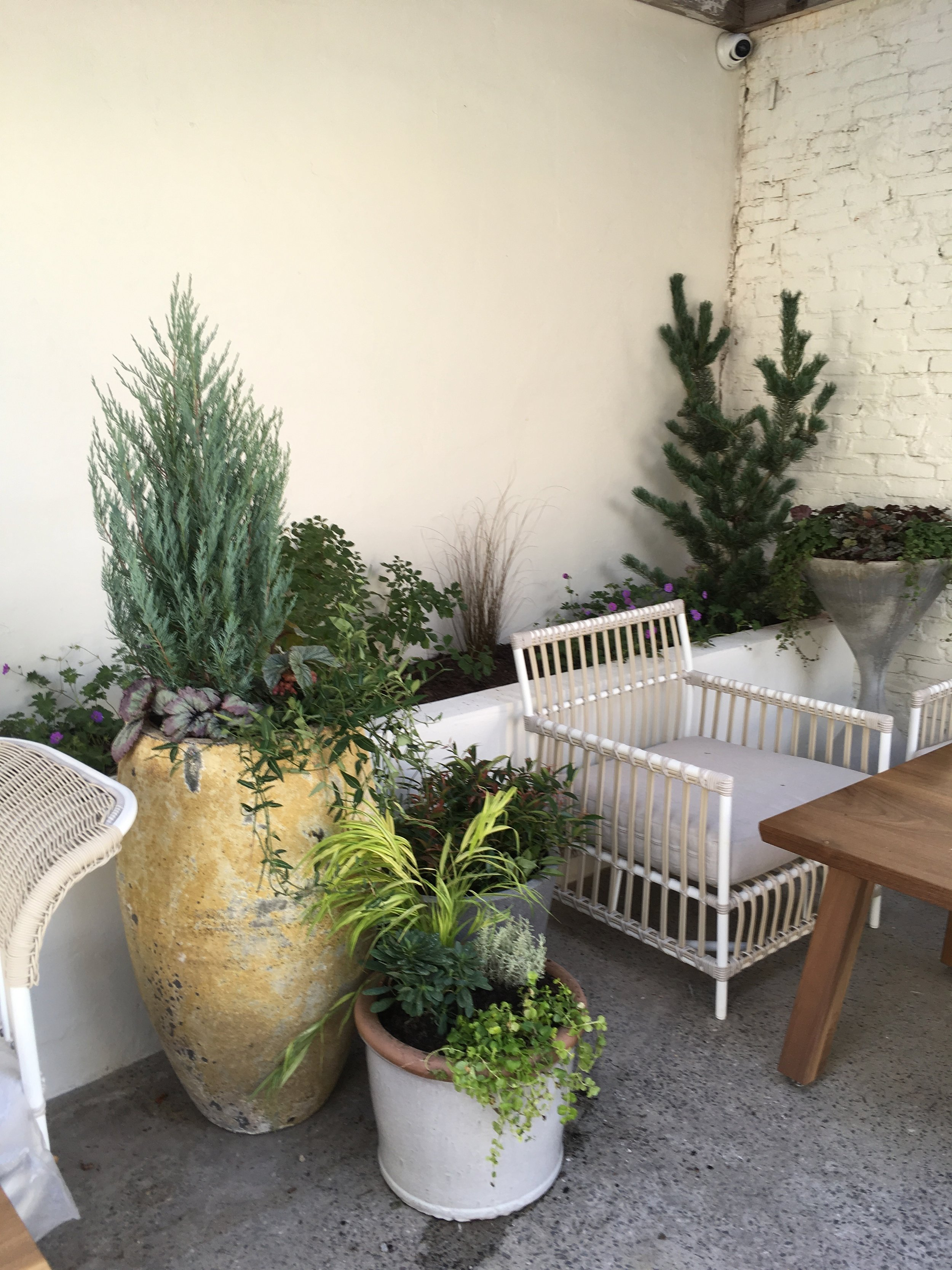 Suraya's (Fishtown)  new outdoor seating area.