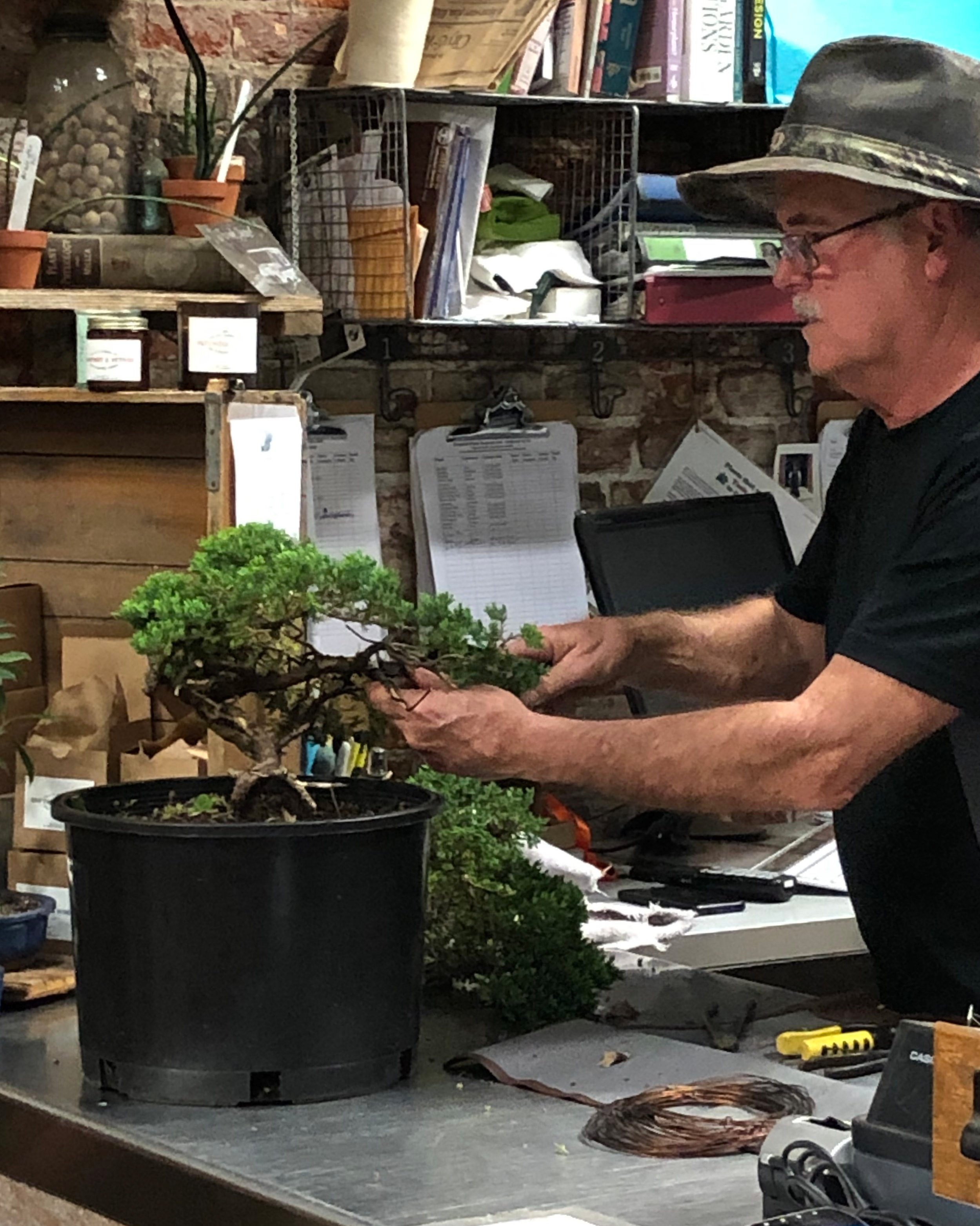 Mark Maher, member of the Pennsylvania Bonsai Society and owner of Lower Bucks Plantscaping demonstrates Bonsai techniques in our Beginning Bonsai Class this past April.