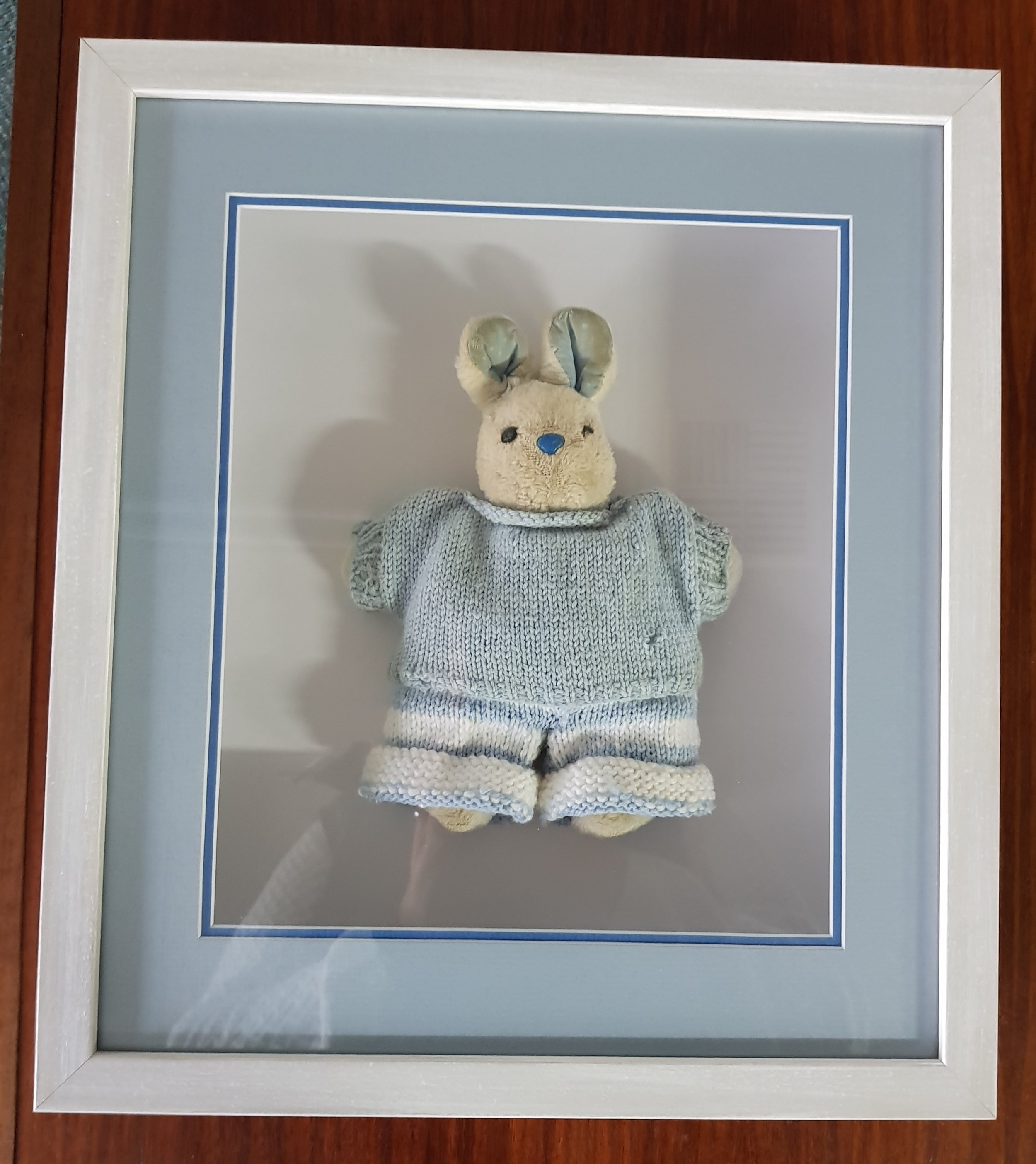30 plus year old baby rabbit