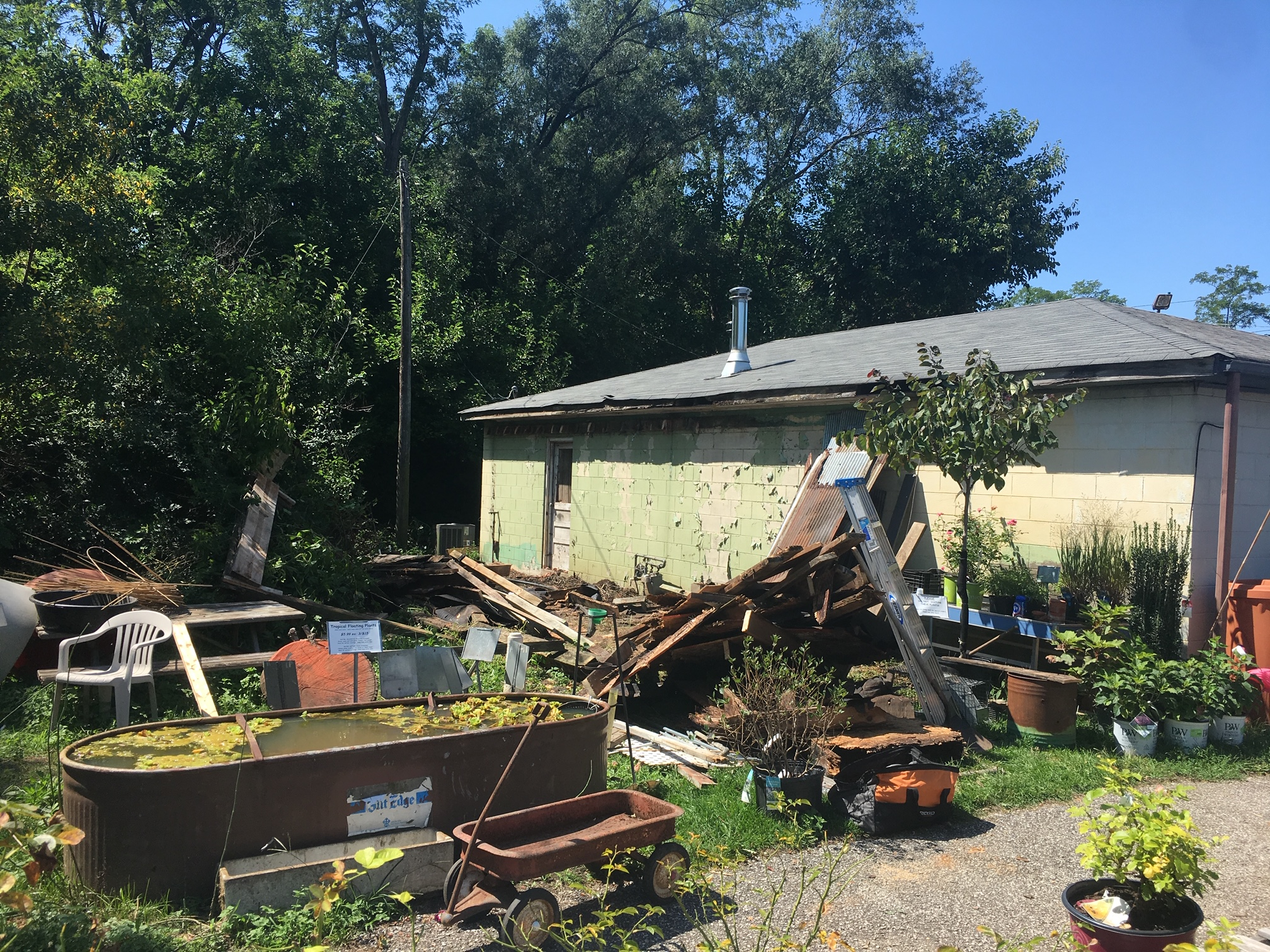 Ummm. . . .this is the back of the houseplant shop after we tore off a dilapidated porch.