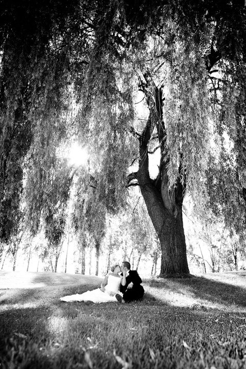 bride and groom posing under a tree outside