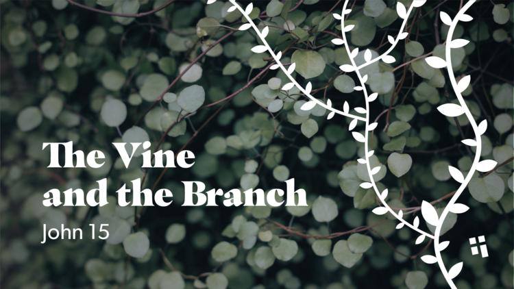 190201_Unite-Vine+Graphics-V2.png