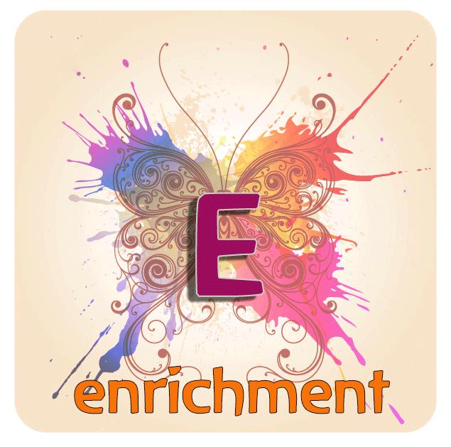 Enrichment-Button.png