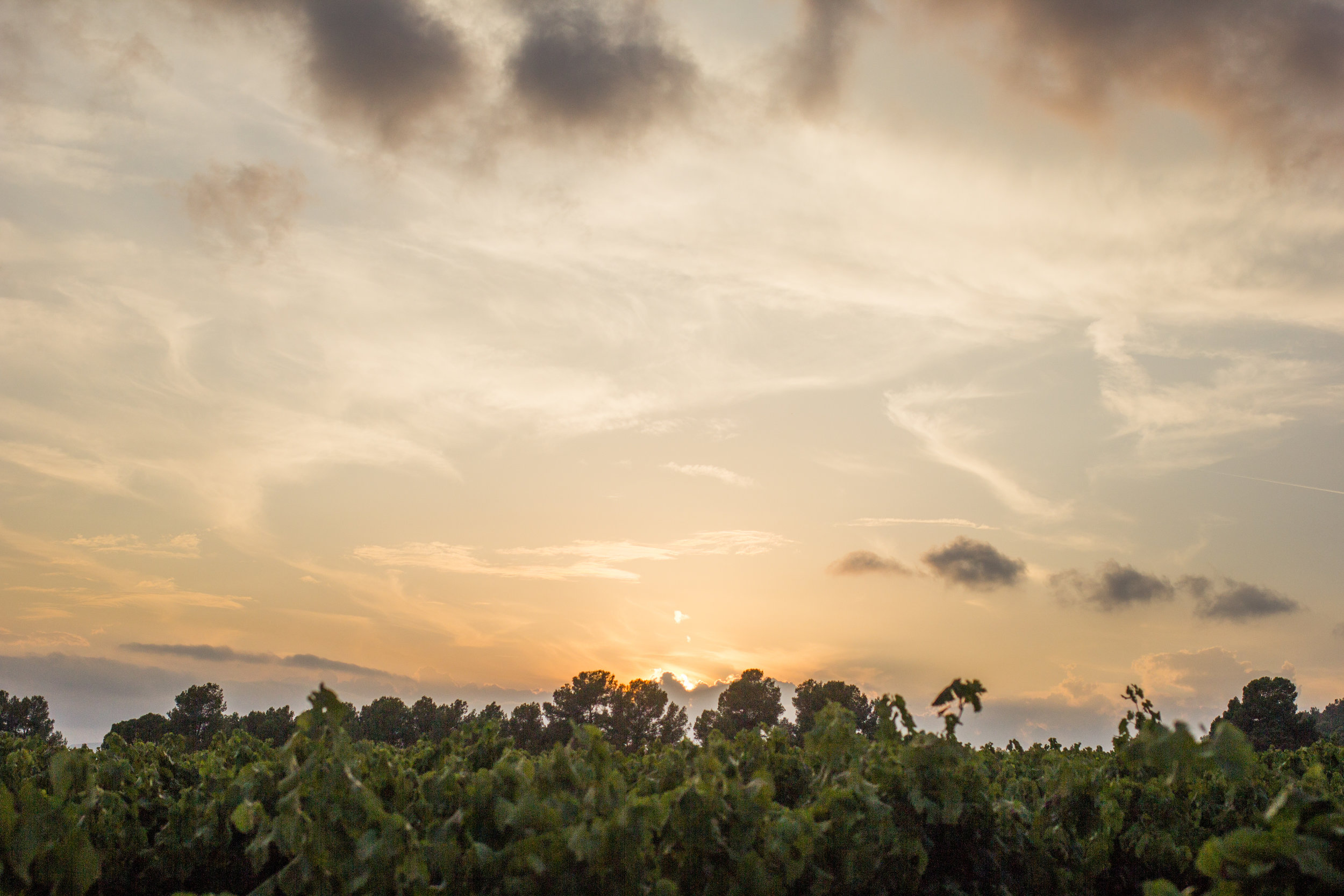 Dramatic sunset over a hilltop in Penedes
