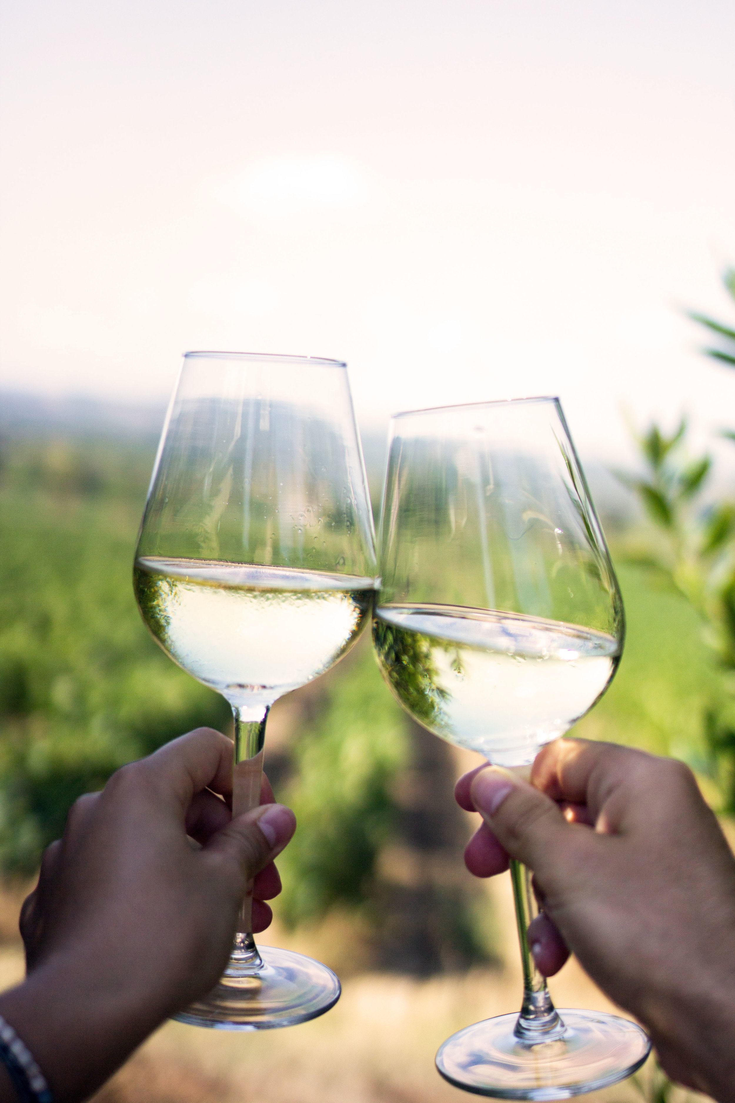 Two glasses of wine clinking
