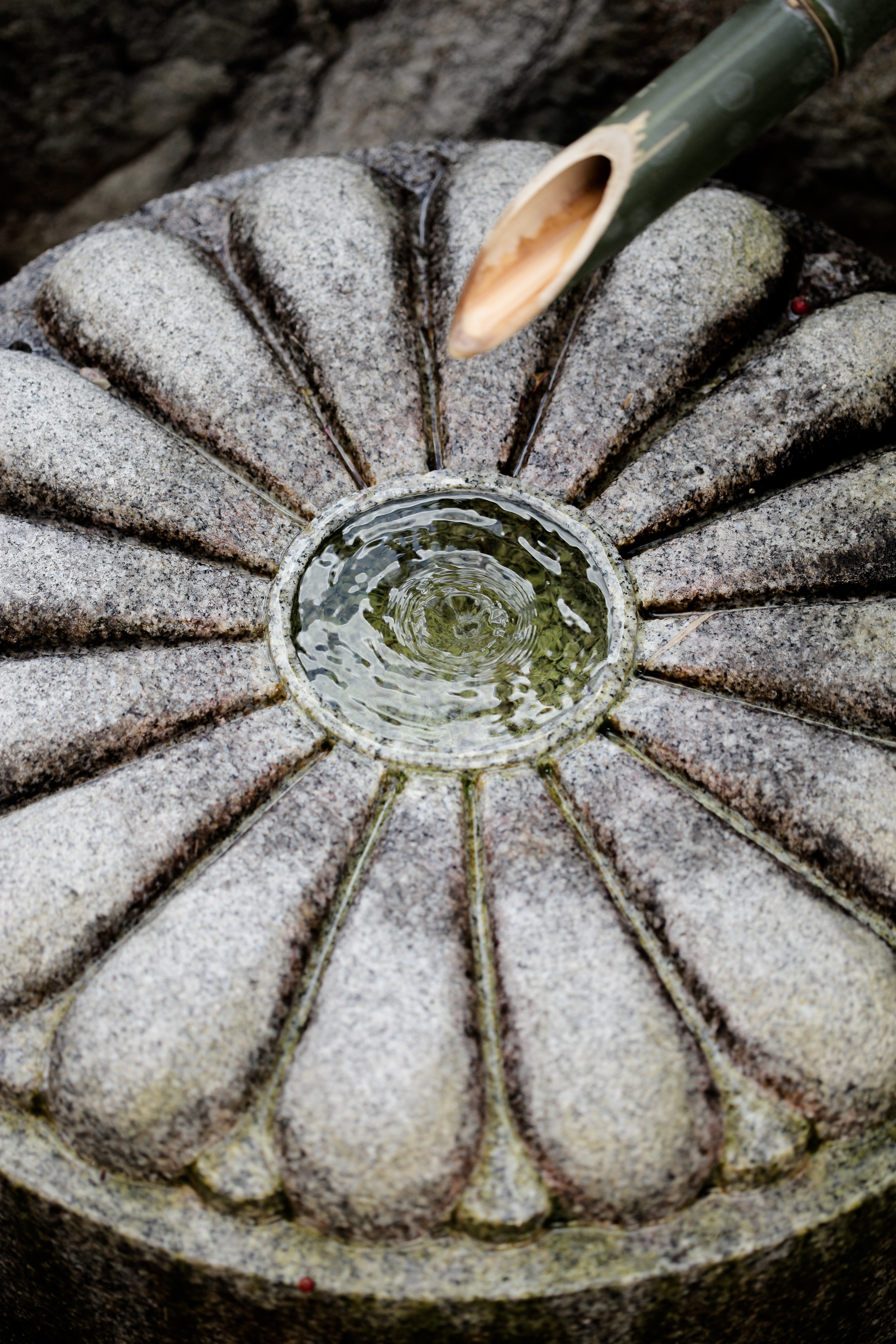 Water feature with the imperial symbol, the chrysanthemum, at Unryu-in Temple