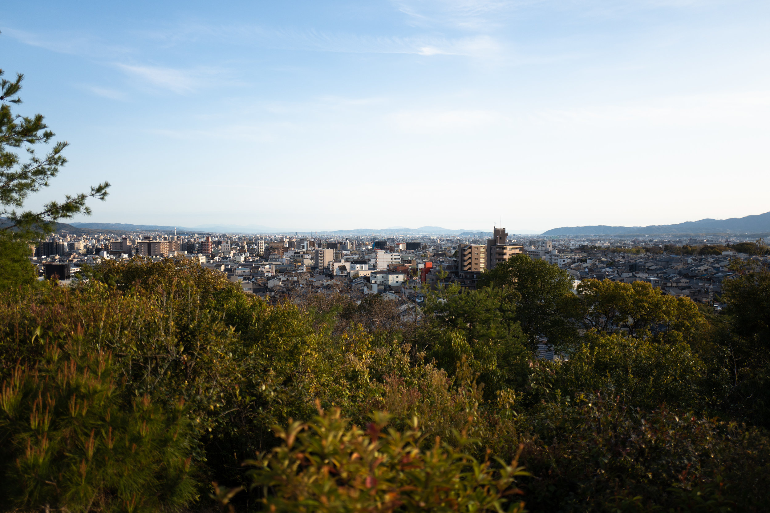 View of Kyoto from Funaoka. Look closely enough at the left side and you'll spot Kyoto Tower.
