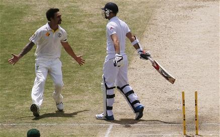 cricket 41.png