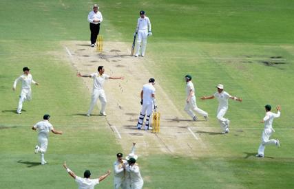 cricket 44.png
