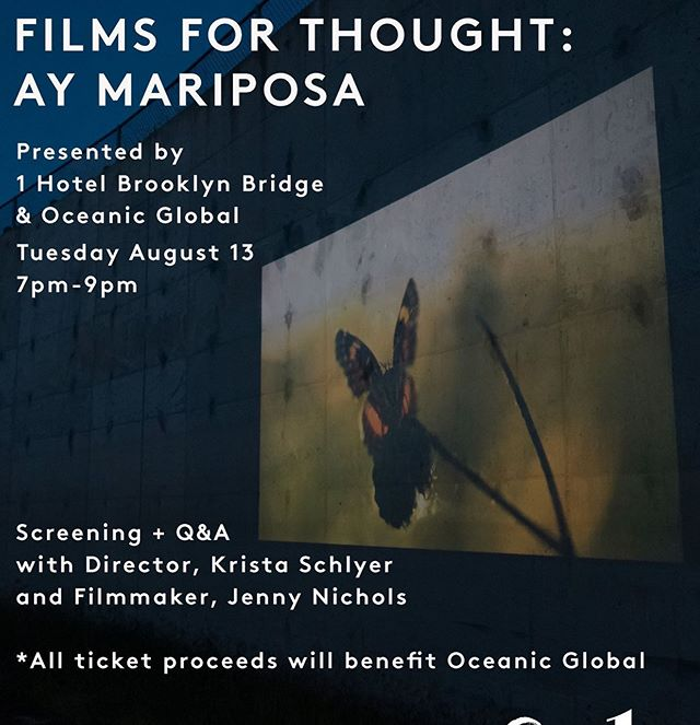 Ay Mariposa will be screening in Brooklyn August 13 as part of the Films for Thought series. Please share with your New York friends!  Tickets: https://www.eventbrite.com/e/films-for-thought-tickets-64980704035?aff=erelexpmlt  @aymariposafilm @jennygnichols @oceanic.global @1hotels #butterflies #documentaryfilm #newyork