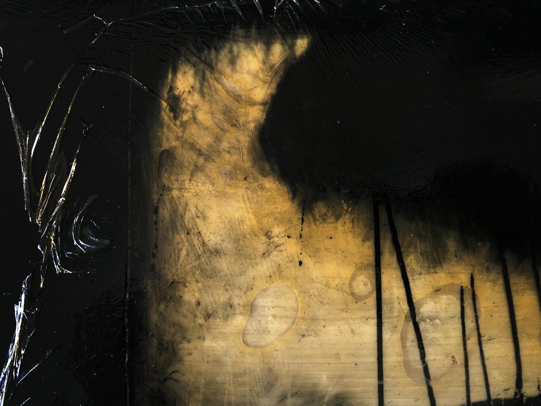 Virgilio Rospigliosi. Colomba in un canneto (Archetipi Psichici Visivi). 1995©. Cm 16x20, acrilico, cera e nylon su alluminio. Dettaglio.jpg
