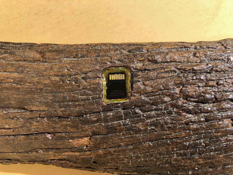 Virgilio rospigliosi Legno di Rembrandt. 2018. Cm 38x10x8, tronco di legno, memory card con all'interno l'immagine smaterializzata del tronco di legno (detail).jpg