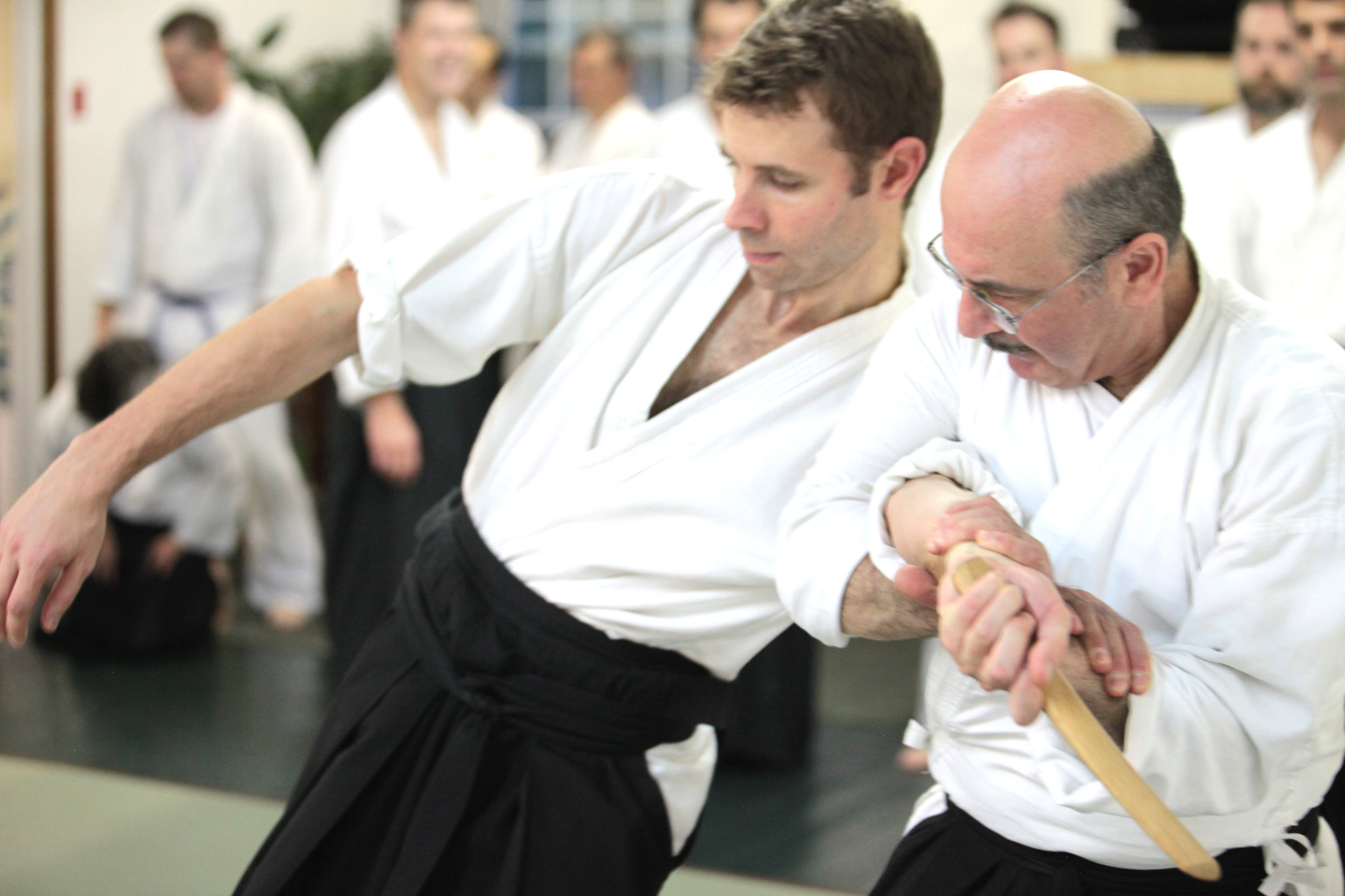 Ryushinkan_Aikido_Classes_5.jpg