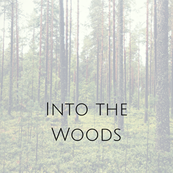 INTO+THE+WOODS+(3)small.png